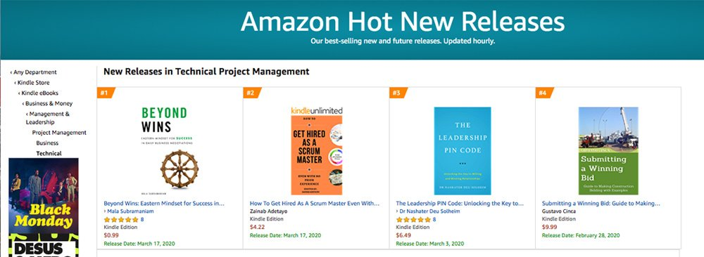 Amazon New Release in Technical Project Management